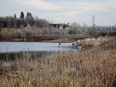 The former gravel pits in Birds Hill is a popular spot for local and migrating wildlife. (SHELDON BIRNIE/CANSTAR/THE HERALD)