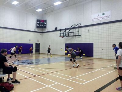 Dodgeball Winnipeg founder and co-ordinator Stacy Huen is encouraging community members to give the sport of dodgeball a try in 2016.