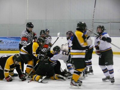 A male linesman was kicked and punched by players while he was lying on the ice during an Interlake bantam boys' minor hockey playoff game in Stonewall on Sunday afternoon.