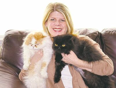 THE ASSOCIATED PRESSCaroline Golon with her two Persian cats, Romeo, 9, and Pugsley, 8, right. She started thinking about cleaning products when she noticed how often the cats jumped between floors and counters.