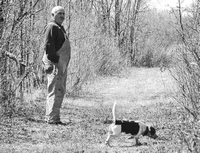 Branko Krpan watches one of the male beagles follow the scent of a rabbit.
