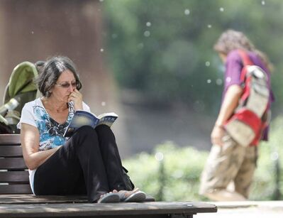 Lorraine Lavallee finds a peaceful park bench to read at The Forks on Saturday amid floating seeds blowing in the breeze.