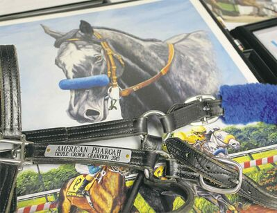 American Pharoah's bridle will be auctioned off to help injured local jockey Alyssa Selman. The horse in the background is 1997 Kentucky Derby winner Silver Charm.