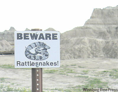 Signs warn of rattlesnakes, but rangers say the park's wildlife is too smart to be out in the heat of the day.