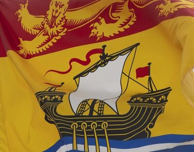 New Brunswick's provincial flag flies on a flag pole in Ottawa, Friday July 3, 2020. THE CANADIAN PRESS/Adrian Wyld