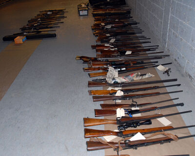 Other firearms seized during the investigation.