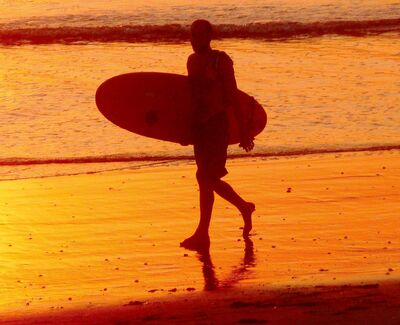 RENETA ROTHWELL / postmedia Network Inc.