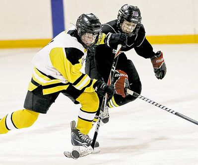 Alberta and Quebec no longer allow bodychecking at the peewee level and Hockey Canada will discuss introducing that policy nationally at its annual general meeting later this month.
