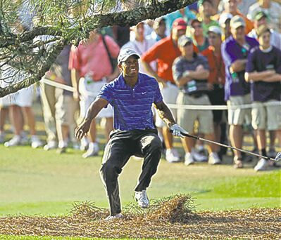 Even Tiger Woods has had his share of run-ins with the Eisenhower tree.
