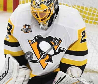 Pittsburgh Penguins goalie Marc-Andre Fleury makes a save during game three of the Eastern Conference final in the NHL Stanley Cup hockey playoffs in Ottawa on Wednesday, May 17, 2017. Three-time Stanley Cup champion goalie Fleury, Nashville forward James Neal and Anaheim defenceman Sami Vatanen are among the high-profile players available for the Vegas Golden Knights to select in the NHL expansion draft.THE CANADIAN PRESS/AP-Peter Diana/Pittsburgh Post-Gazette via AP