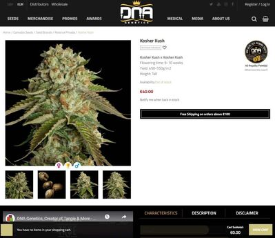 Kosher Kush, as seen on the website of cannabis breeder DNA Genetics. The cannabis cultivar is known for its potency. (DNA Genetics)</p>