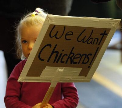 Shanti McNeill, 3, carries a sign advocating the allowing of urban poultry farming at Monday's protection and community services committee meeting.