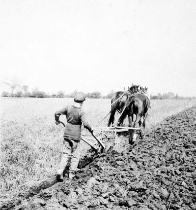This image of a Barnardo Boy pulling a plow an a farm near Russell was used on a Canada Post stamp commemorating the Home Children.