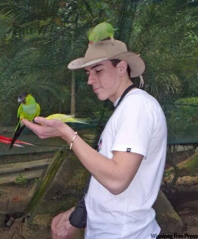 Exotic birds flock to visitors at Enchanted Gardens in Ocho Rios.