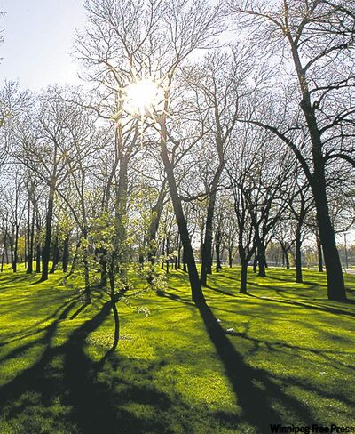 Councillors are calling for more funds for city parks.