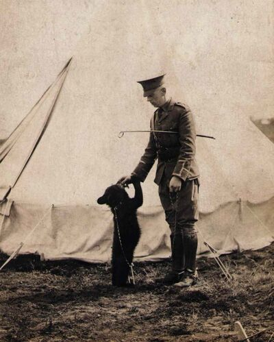 Harry Colebourn and his bear Winnie are seen in a 1914 photo. Colebourn, a veterinarian, bought a bear cub for $20 from a trapper in White River, Ont., in 1914 and took it to England at the onset of the First World War.