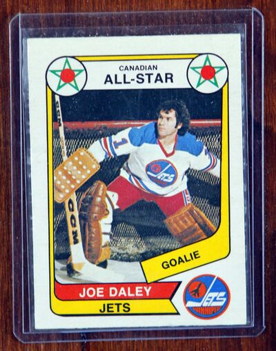 BORIS MINKEVICH / WINNIPEG FREE PRESS</p><p>Joe Daley played goal for the Jets during the WHA days.</p>