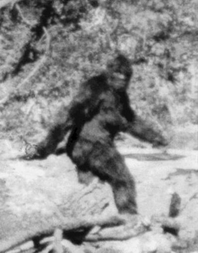 The latest novel by World War Z author Max Brooks (right) sees a community grapple with famished Sasquatch after a cataclysmic seismic event.</p>