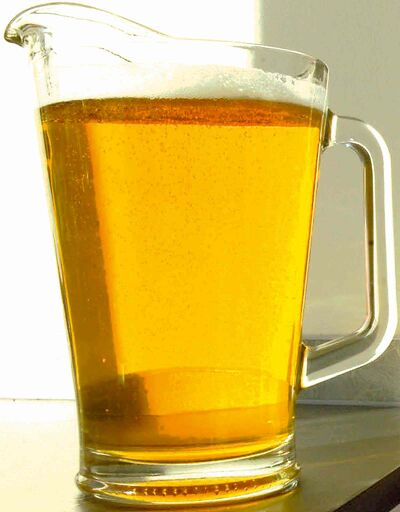FULL CLOSE CUT CLOSECUT - Pitcher of Beer