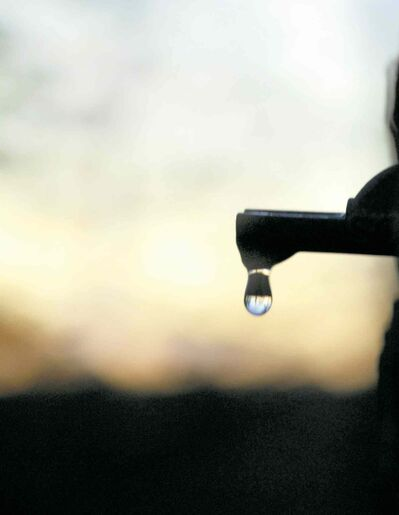 One drip at a time, sap from maple trees is collected to be cooked over an arch, or wood-burning stove, to make syrup.
