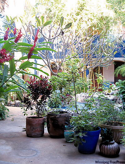 A colourful Merida courtyard.