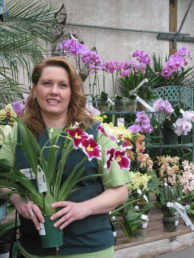 Shelmerdine Garden Centre greenhouse manager Deanne Cram holds one of the orchids now in bloom at the Headingley business.