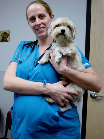 Cyrus with his WHS vet Dr. Melanie Youngs. Cyrus still needs to be neutered and get a teeth cleaning before he can be adopted out.