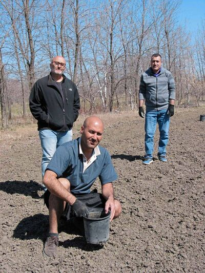 (Clockwise, from back left) Michel Aziza, Operation Ezra Working Committee chair, and Operation Ezra volunteers Salim Hasan and Majiv Haji are shown on May 12 planting onions at Operation Ezra's Healing Farm Project. The farm is located on nine acres of land in St. Francois Xavier donated by Bo and Gloria Wohlers.