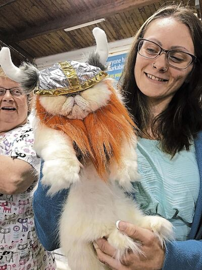 SUPPLIED</p><p>Brittney Maskewich&rsquo;s cat Leo looked dashing in a miniature-sized Viking costume.</p></p>