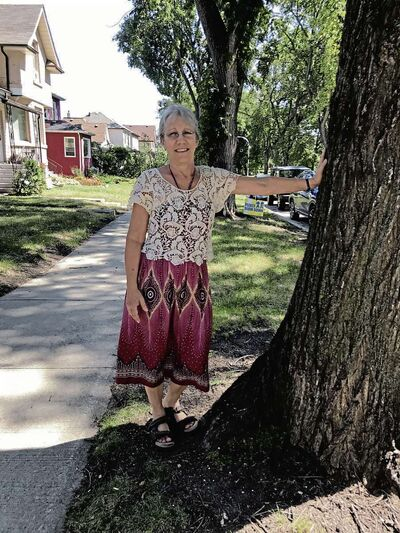 Bonnie Sheppard-Lewis has been banding elm trees along her block of Noble Avenue for 20 years. This year, the rest of Glenelm will join her. (SHELDON BIRNIE/CANSTAR/THE HERALD)