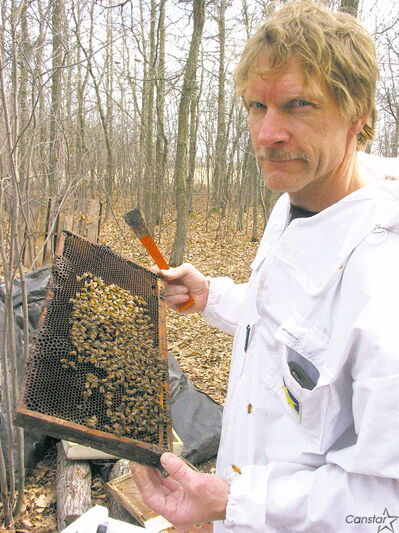 Apiarist Ray Giguere with some bees, which he keeps south of Winnipeg.