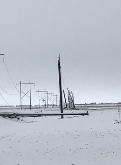 SUPPLIED</p><p>Damaged Manitboa Hydro lines are seen on Oct. 12 after the snow storm.</p>