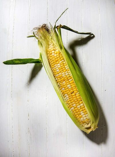 Indulge your appetite for sweet corn by shopping farmers markets, roadside stands and local grocers for freshly picked ears.