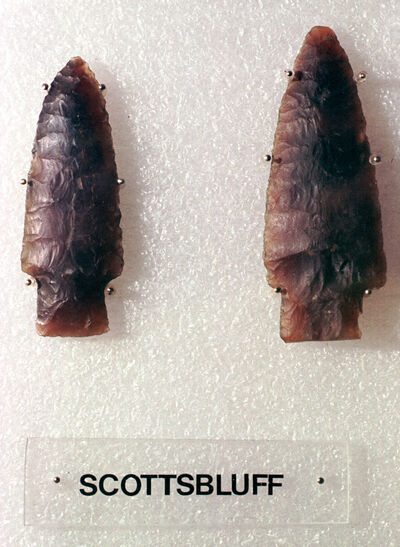 Scottsbluff points in the Moncur Gallery collection in the Boissevain and Morton Regional Library.