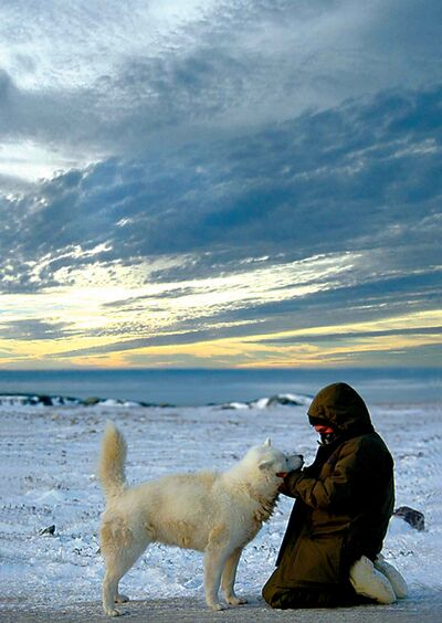 Caleb Ross with an endangered Eskimo dog.