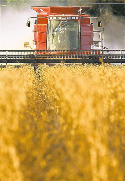 Soybeans are Manitoba's third crop, with 875,000 acres planted in 2012.