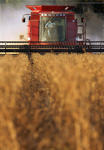 Local farmers expect to harvest 928,000 tonnes of soybeans.