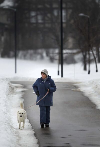 PHIL HOSSACK / WINNIPEG FREE PRESS</p><p>A pedestrian takes advantage of the snow- and ice-free walkways through the park, while the pooch prefers his paws be in the snow.</p>