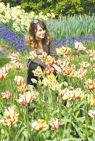 Thousands visit the Keukenhof Nurseries in Holland around the Mother's Day period.