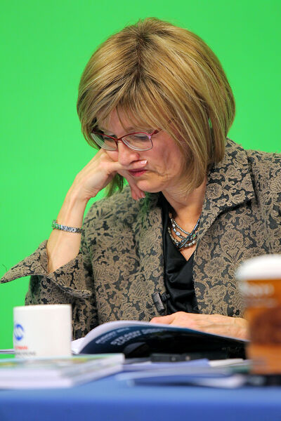 Mayor Shari Decter Hirst reviews the 2014 provincial budget prior to discussing the document with other panellists at the Westman Communications Group television studios on Park Avenue on Thursday.