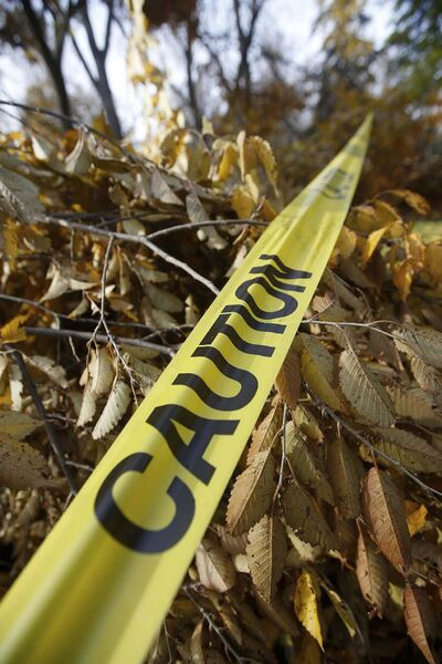 JOHN WOODS / WINNIPEG FREE PRESS<p/> <p>Downed trees are marked with caution tape in Kildonan Park.