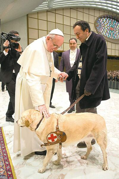 the associated pressPope Francis pats the guide dog of a visually impaired journalist Saturday.