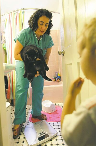 Kathy Willens / The Associated Press Leo Dirks Amodeo, 2, watches Dr. Elisabetta Coletti weigh the 28-pound family cat.