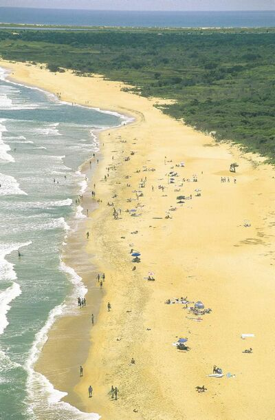 Buxton Beach on Cape Hatteas, North Carolina.
