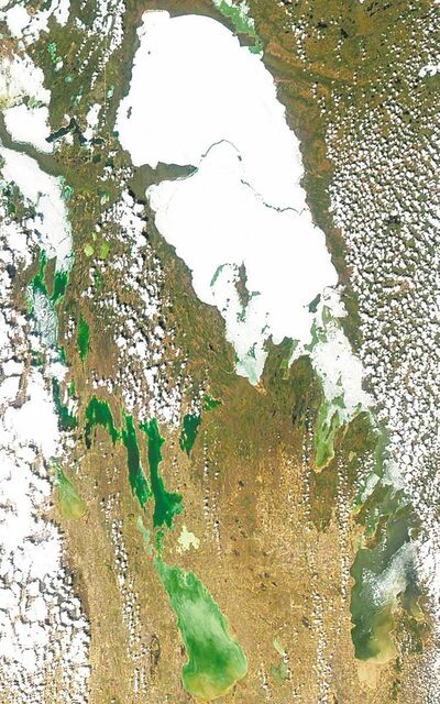 A satellite image of blue-green algae on Lake Winnipeg taken in May 2007.