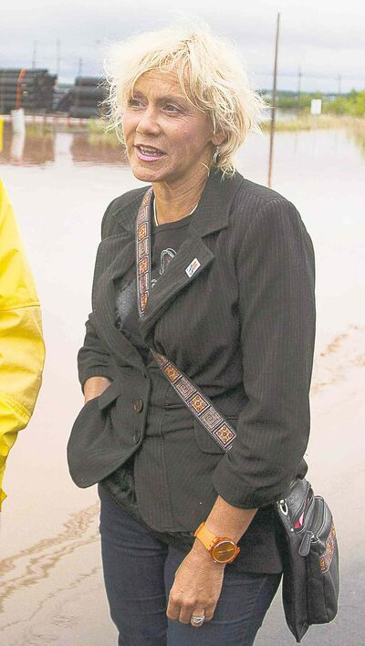 Truro-Bible Hill MLA Lenore Zann in 2012. Zann says she was cyberbullied after a topless image of her was posted on Twitter. (Andrew Vaughan / The Canadian Press archives)