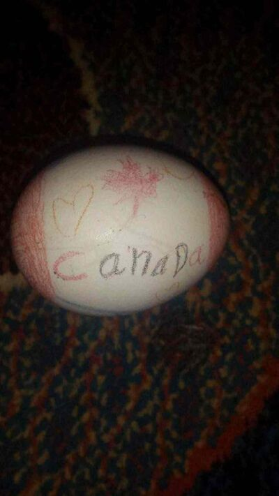 SUBMITTED PHOTO</p><p>Roz Khudher Naso, 7, drew a Canadian flag on her egg for Yazidis new year. </p>