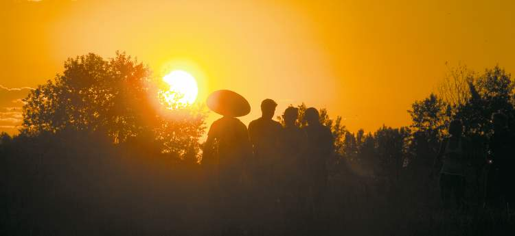 Festival-goers travel between stages at sunset on a warm Saturday evening at Birds Hill Park.