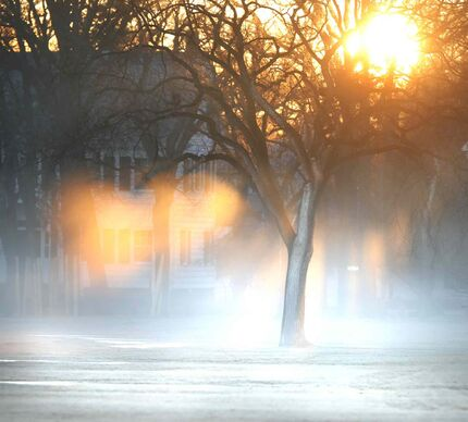 The rays of the morning sun rise Tuesday catch the fog rising off the field in Assiniboine Park.