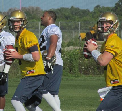 Ex-CFL QBs Barrett and McManus believe Willy is right man at the right time; young pivot confident he'll 'be ready when the lights go on.'